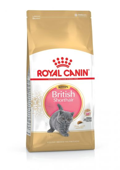 Royal Canin British Shorthair Kitten сухой корм для котят породы британская короткошерстная